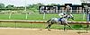 Marilyn's Guy winning at Delaware Park racetrack on 6/26/14