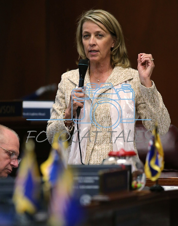 Nevada Sen. Barbara Cegavske, R-Las Vegas, speaks on the Senate floor at the Legislative Building in Carson City, Nev., on Tuesday, May 21, 2013. .Photo by Cathleen Allison