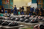 Tokyo, 1st of March 2010 - Tuna at Tsukiji wholesale fish market, biggest fish market in the world. 2:30 a.m, fresh tunas are prepared, weighted and scrutinized before auctions.