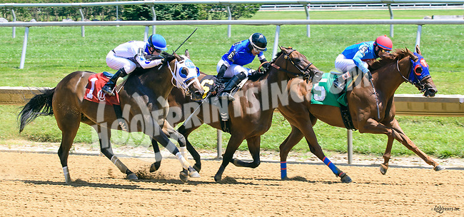 Explosive Candy winning at Delaware Park on 7/3/17