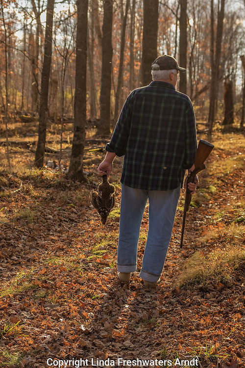 Ruffed grouse hunting in northern Wisconsin
