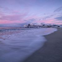 Pink twilight of the Arctic Polar Night at Storsandnes beach, Flakstadøy, Lofoten Islands, Norway