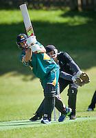 Grant Elliott bats during the Ewen Chatfield Trophy Wellington premier men's club cricket match between Karori and Naenae at Benburn Park, Karori, Wellington, New Zealand on Sunday, 31 October 2015. Photo: Dave Lintott / lintottphoto.co.nz