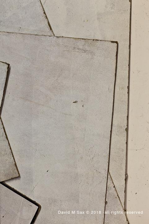12.19.11 - Angles...