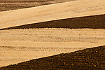 Plowed fields and harvested fields in the Palouse valley in the fall