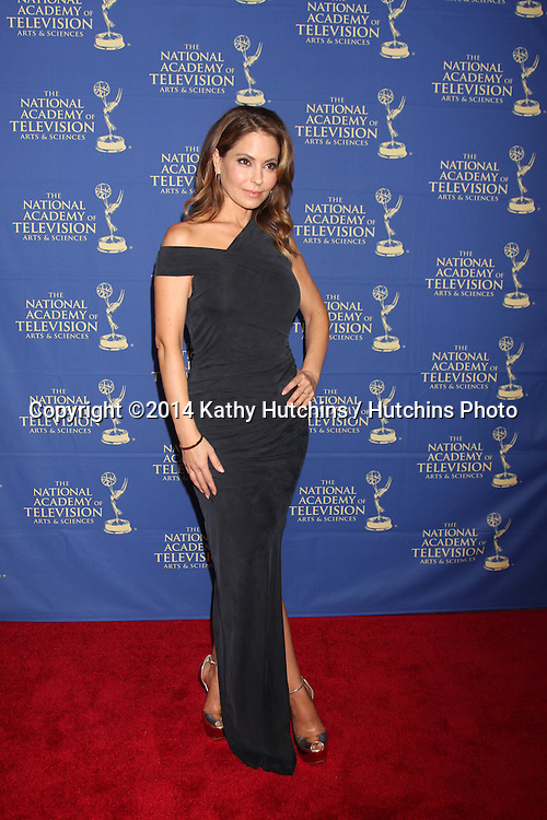 LOS ANGELES - JUN 20:  Lisa LoCicero at the 2014 Creative Daytime Emmy Awards at the The Westin Bonaventure on June 20, 2014 in Los Angeles, CA