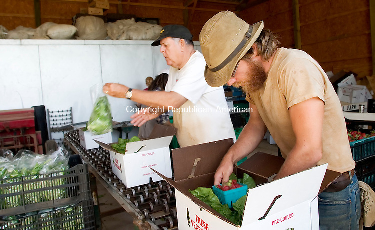 NEW MILFORD, CT- 21 JUNE 2006- 111706JT26-<br />Share holder and volunteer Bob Cornell of Prospect and apprentice Seth Goepel fill boxes to be used to distribute vegetables grown at Fort Hill Farm in New Milford on June 21, 2006.<br />Josalee Thrift Republican-American