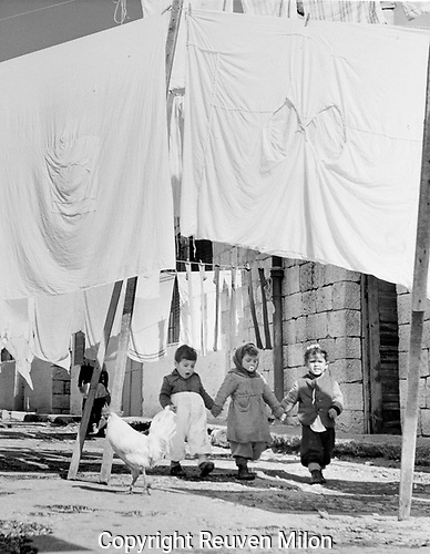 Street scene with chickens, children, laundry, in Jerusalem neighbourhood,