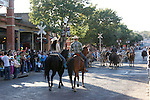 A cattle drive of Texas Longhorn cattle down the street at the Stockyards in Fort Worth Texas