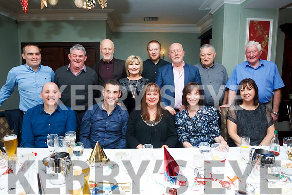 The staff from the ETB Training Centre in Monavalley enjoying their Christmas Party in the Imperial Hotel on Friday night last.  Seated l-r ,Tom Cronin, John O'Connor, Bernadette Corridan and Aoife Connisky Clifford and Maura Cantillion.<br /> Back l-r, Kevin O'Connor, Tom Cronin, Eimear O'Leary, Conor O'Sullivan, Christy Enright, John O'Keeffe and Liam Walsh.