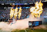 Carolina Panthers 2015-2016 Season Gallery II
