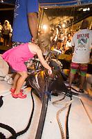 A little girl touches a Pacific blue marlin grander (1,000-lb. or more fish) on the Lana Kila, Kona, Big Island.