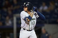 Johan Camargo (17) of the Gwinnett Stripers at bat against the Scranton/Wilkes-Barre RailRiders at Coolray Field on August 17, 2019 in Lawrenceville, Georgia. The Stripers defeated the RailRiders 8-7 in eleven innings. (Brian Westerholt/Four Seam Images)