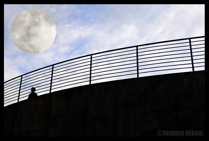 Silhouetted railing with person and moon.