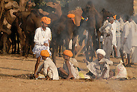 The Raika are the pastoral nomads and camel breeders of western Rajasthan. For Raika communities, the camel is the basis of their livelihood. They believe that Lord Shiva created their caste to look after the camel.