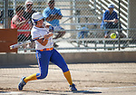 Wildcat's Kacie Freudenberger hits against Colorado Northwestern at Edmonds Sports Complex Carson City, Nev., on Friday, April 17, 2015.<br /> Photo by Cathleen Allison
