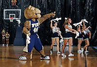 Florida International University mascot performs during the game against Lynn University.  FIU won the game 68-30 on November 30, 2011 at Miami, Florida. .