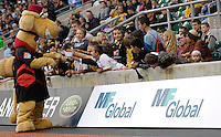Twickenham, GREAT BRITAIN, Saracens Mascot with the supporters, during the Guinness Premiership match,  Saracens vs Harlequins, at Twickenham Stadium, Surrey on Sat 06.09.2008. [Photo, Peter Spurrier/Intersport-images]
