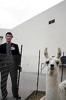 An ostrich in the Casino Agua Caliente Zoo, Tijuana. Press toy around Baja California Norte