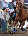 Trigger Pugh competes in the steer wrestling competition at the Reno Rodeo in Reno, Nev., on Friday, June 20, 2014.<br />