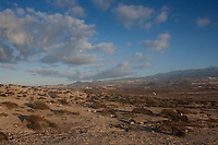 View of El Medano countryside,Tenerife, Canary Islands