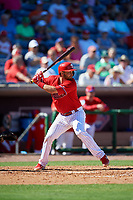Philadelphia Phillies catcher Drew Butera (41) at bat during a Grapefruit League Spring Training game against the Baltimore Orioles on February 28, 2019 at Spectrum Field in Clearwater, Florida.  Orioles tied the Phillies 5-5.  (Mike Janes/Four Seam Images)