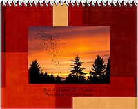 Cover 2011 Birds of a Feather Calendar