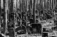 POLAND, 05.2002, Warsaw..The vast Jewish Cemetery is the most dramatic remnant of the Jewish legacy. Founded in 1806, it still has over 100,000 gravestones and is the largest collection of its kind in Europe. © Bruno Cogez / Est&Ost Photography