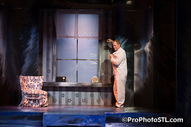 Stairs to the Roof presented by St. Louis Actors' Guild at Boo Cat Club in St. Louis, MO on Nov 5, 2014.