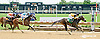Goodnight Angel winning at Delaware Park on 7/16/14