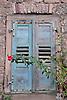 alter geschlossener Fensterladen mit roter Rose