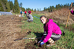 Volunteers, Juliet, planting trees, Eaglemount Farms, Chimacum Creek, North Olympic Salmon Coalition, Jefferson County, Washington State, Pacific Northwest, United States, habitat restoration,