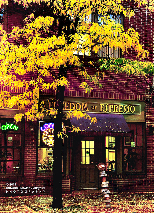Fall Colors in Syracuse New York, In Front of Freedom of Espresso in Downtown