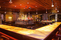 C- Fairmont Princess Plaza Bar & Fire Pits, Scottsdale AZ 5 15