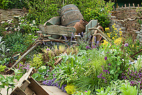 Old farming cart, barrels for rustic charm in herb and flower and vrgetable garden