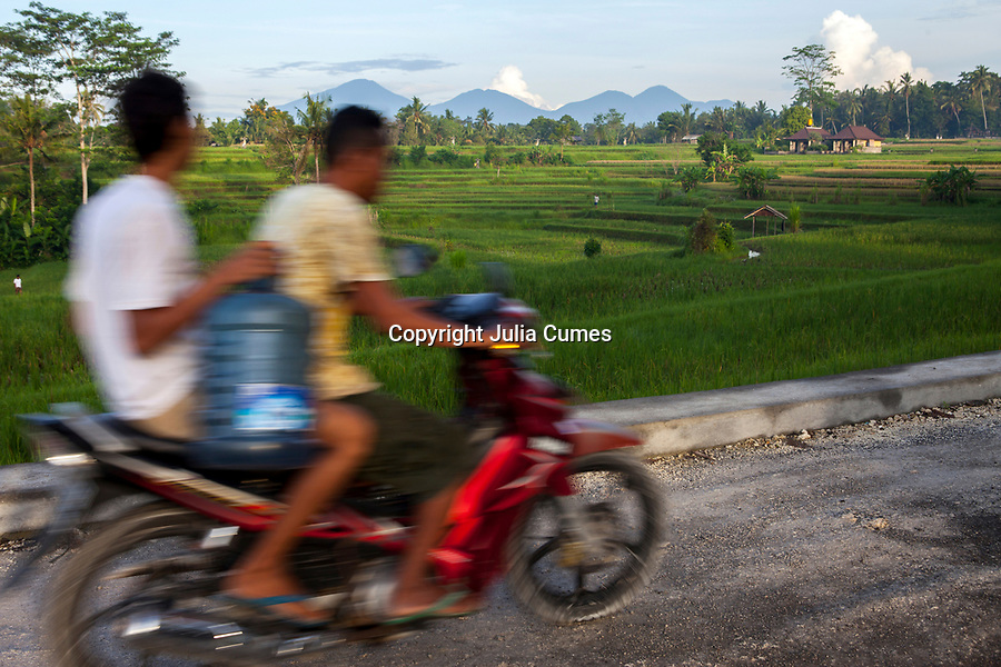 Two men on a motorcycle pass a rice paddy in Bali, Indonesia.