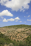 Israel, Wadi Namer in the Upper Galilee