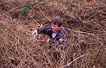 AE2CG2 Young boy cutting brambles in overgrown garden