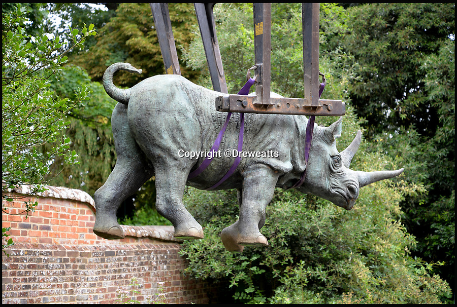 BNPS.co.uk (01202 558833)<br /> Pic: Dreweatts/BNPS<br /> <br /> Bronze rhinoceros estimated at &pound;5,000.<br /> <br /> A remarkable collection of giant bronze animals has emerged for auction and is tipped to sell for &pound;40,000.<br /> <br /> The menagerie of exotic animals includes a 7ft tall giraffe, a 9ft long elephant and a 1,800lb stag.<br /> <br /> Also included in the collection are a lion, a cheetah, a panther, a rhinoceros, a hippopotamus, a crocodile, a deer, a wild boar, a horse and various bronze birds.<br /> <br /> They were consigned by a vendor in Berkshire who collected the bronze animals with her late husband over the course of 20 years.