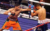 Boxing - Sheffield 27-Apr-2013