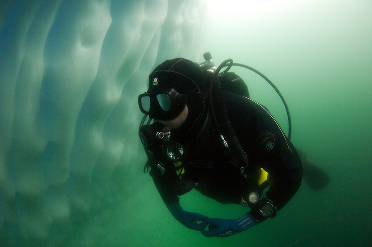 Diver diving an iceberg in Pléneau Bay