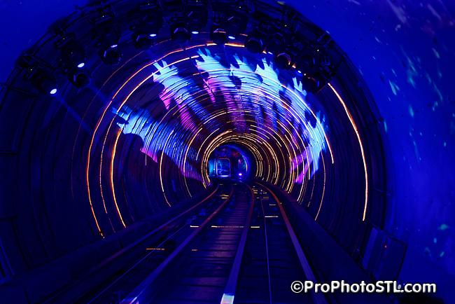 The Bund Sightseeing Tunnel in Shanghai, China