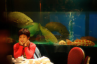 Live Reef Fish seafood restaurant in Guangzhou. Lei Garden Restaurant, 4th Floor, YiAn Plaza, 33 Jian She Liu Ma Lu.Dong Shan District  Telephone is (86-20) 8363 3268.Main contact:.Nicole_artbud@hotmail.com or nicolecheng@vip.sina.com.Cell phone number: +(86) 139 2214 1600.Nicole Cheng.Senior Associate-Guangzhou.Burson Marsteller.Room 6805A, CITIC Plaza, 233 Tianhe North Road.Guangzhou, 510613 P.R.C..+8620 3877 1820 X229 Work Phone.3877 1815 Fax.Nicole_cheng@bm.com.Initially reef fish only came from the South China Sea, but transport developed and fish now come from all over S.E. Asia.  The whole reef fish trade crashed with the 97-98 HK stock market crash.  LRF trade is directly linked to economy.  With China coming online financially the trade is booming.  These fish are often used for celebratory meals in Hong Kong, but in Guangzhou the fish are so cheap and the apartments are so small that many people eat out...  And the stereotype is that there is lots of food left on the table.  Often a fish is popular because of its color... more than its taste.