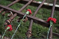 Pictured: Carnations is left at the remnants of the crashed gates part of the the uprising monument at the Athens Polytechinc in Athens Greece. Wednesday 16 November 2016<br /> Re: 43rd anniversary of the Athens Polytechnic uprising of 1973 which was a massive demonstration of popular rejection of the Greek military junta of 1967–1974. The uprising began on November 14, 1973, escalated to an open anti-junta revolt and ended in bloodshed in the early morning of November 17 after a series of events starting with a tank crashing through the gates of the Polytechnic.
