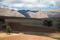 The Sacred Valley of the Incas, Cusco Region, Peru, South America