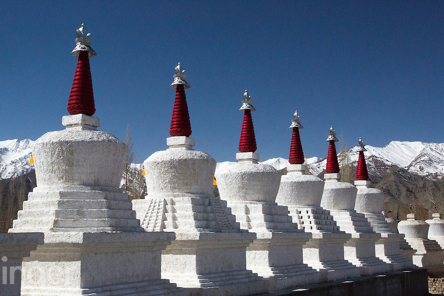 Chortens at Thiksey Monastery near Leh, Ladakh