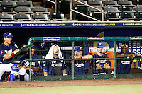 21 September 2012: Boris Marche, Arnaud Fau, Carlos Hereaud, Jim Stoeckel, Emmanuel Garcia and Rene Leveret are seen in the dugout during France vs South Africa tie game 2-2, rain delayed at the end of the 9th inning at 1 AM, during the 2012 World Baseball Classic Qualifier round, in Jupiter, Florida, USA. Game to resume 22 September 2012 at noon.