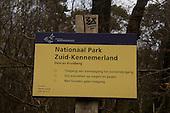 Duin en Kruidberg in Nationaal Park Zuid-Kennemerland.