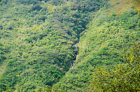A waterfall in a ridge in Waipi'o Valley, Hamakua District, Island of Hawai'i.