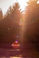Microsoft Sunrise